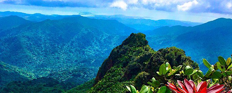 PUERTO RICO • ISLAS VIRGENES DE LOS ESTADOS UNIDOS